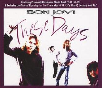 These Days (Bon Jovi song) - Image: These Days Bon Jovi
