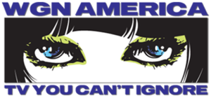 WGN America - Original logo as WGN America, used from May 2008 to January 2009; the text became the sole logo from January to April 2009.