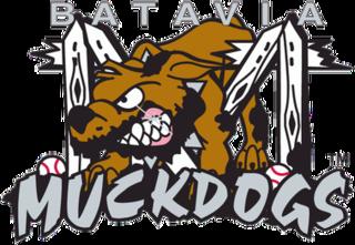 Batavia Muckdogs