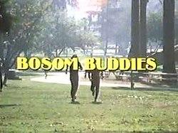 Bosom Buddies Wikipedia
