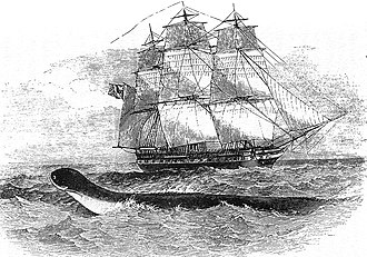 George Wellesley - The fifth-rate HMS ''Daedalus'' which Wellesley commanded