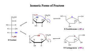 Isomeric forms of fructose