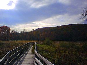 Goosepond Mountain State Park - Image: Goose Pond Mtn