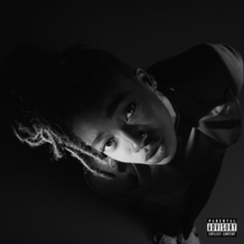Little Simz – Grey Area.png