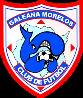 Ballenas Galeana Morelos