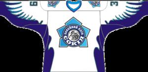 Sokil Kiev - Current jersey