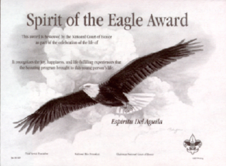 Spirit of the Eagle Award - Certificate