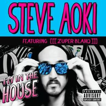 Steve Aoki I%27m In The House
