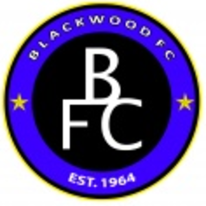 Blackwood F.C. - Image: Blackwood F.C. logo