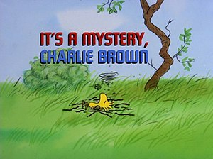 It's a Mystery, Charlie Brown - Image: Its a mystery charlie brown title card