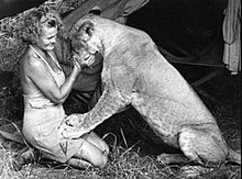 Joy Adamson with Elsa the lion, circa de 1958