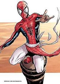 spider man collectors edition india