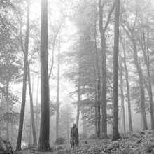 A greyscale picture of a young woman standing in the woods