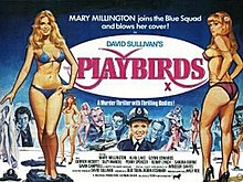 The Playbirds FilmPoster.jpeg