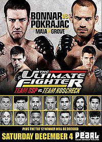 A poster or logo for The Ultimate Fighter: Team GSP vs. Team Koscheck Finale.