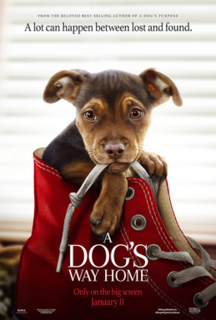 <i>A Dogs Way Home</i> 2019 film directed by Charles Martin Smith