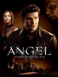 <i>Angel</i> (season 3) season of television series