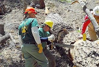 Crosscut saw - San Gabriel Mountains Trailbuilder volunteers get safety training.
