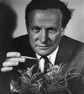 G. Ledyard Stebbins American botanist and geneticist