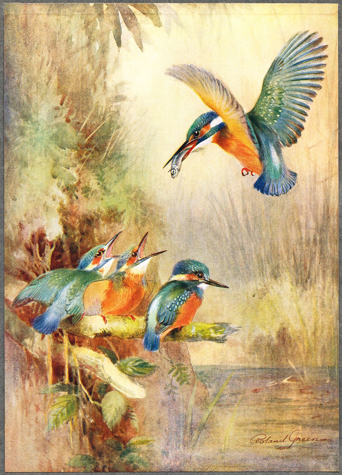 Roland Green (painter) - Wikipedia