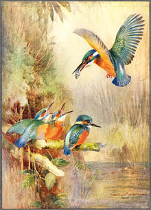 Roland Green Painter Wikipedia