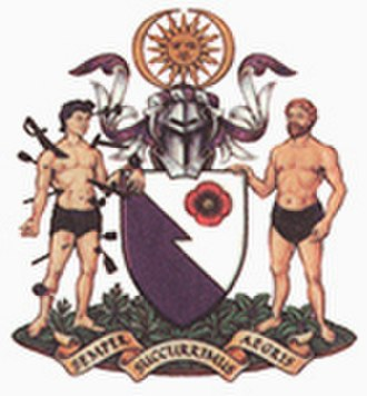 Royal College of Emergency Medicine - Arms of the College