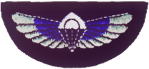 5th Special Air Service - SAS pattern parachute wings.