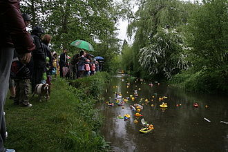 Shoreham, Kent - Shoreham duck race