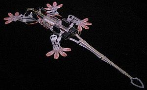 Bio-inspired robotics - Stickybot: a gecko-inspired robot