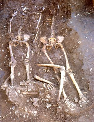 Skeletons under excavation at Walkington Wold