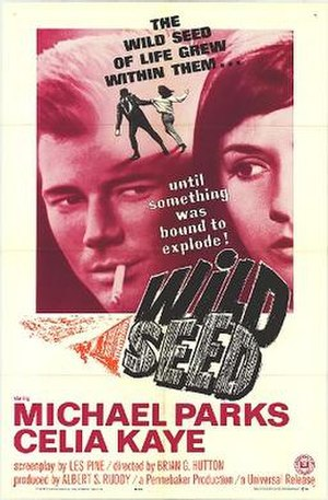 Wild Seed (film) - Theatrical release poster