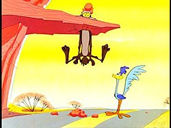 Road Runner and Wile E.Coyote