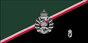 The British Columbia Regiment (Duke of Connaught's Own) - The camp flag of The BCR.