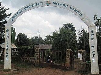 Shambu - Image: Wollega university shambu campus