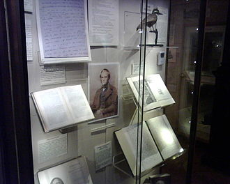 Eton College Collections - Part of the Darwin Section of the Eton College Natural History Museum.