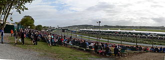 Pukekohe Park Raceway - View from Ford Mountain during the 2006 V8 Supercars Round