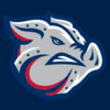 IronPigs.PNG