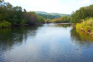 Margaree River - The Margaree River at Gillisdale