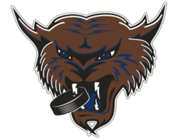 Thunder Bay Thunder Cats Primary 1994.png