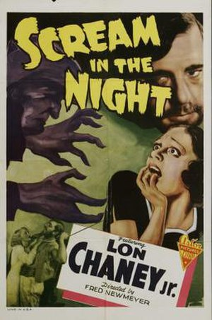 A Scream in the Night - Re-release poster