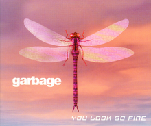 Garbageyoulooksofine1.png