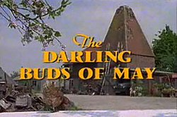 The Darling Buds Of May Tv Series Wikipedia