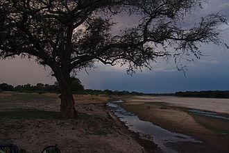 Wildlife of Zambia - South Luangwa National Park