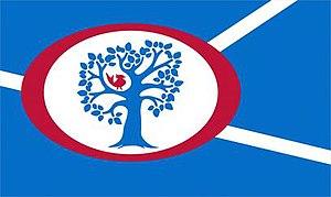 Annandale, Virginia - Image: Annandale Flag