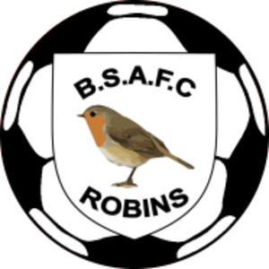 Budleigh Salterton A.F.C. - Image: Budleigh Salterton F.C. logo