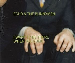 I Want to Be There (When You Come) - Image: Bunnymen iwanttobethere 2