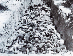 Battle of Cassinga - Image: Cassinga Victims