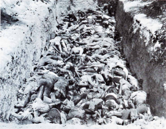 Battle of Cassinga - Image: Cassinga Victims