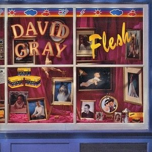 Flesh (album) - Image: David Gray Flesh Alternate artwork
