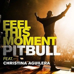 Feel This Moment - Image: Feel This Moment Official Single Cover